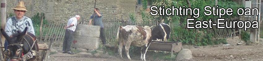 Stichting Stipe oan East-Europa